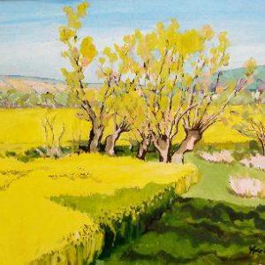 Mézy-Moulin, le champs de colza 60 x 50 cm
